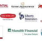Thị trường bảo hiểm ô tô hiện đang rất phong phú