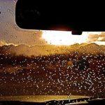 Đối phó với hiện tượng kính mờ khi lái xe mùa đông - ảnh 1